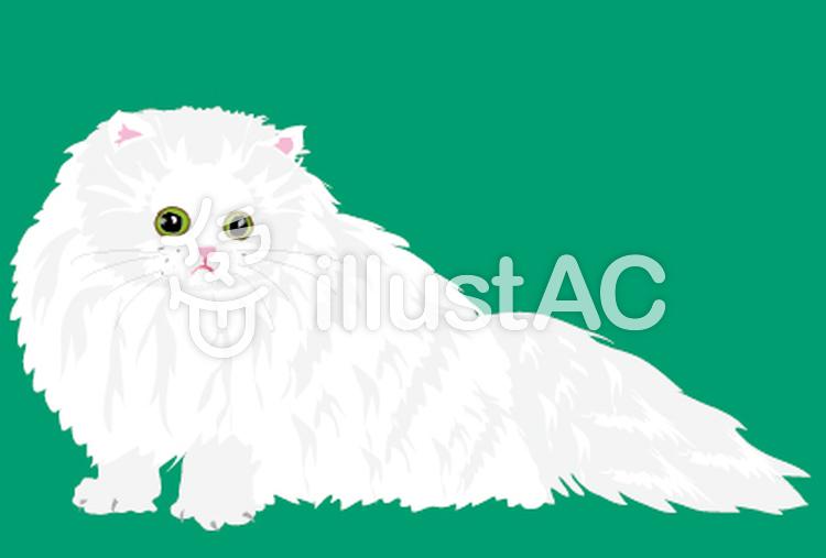ペルシャ猫のネコちゃんイラスト , No 62289/無料イラストなら