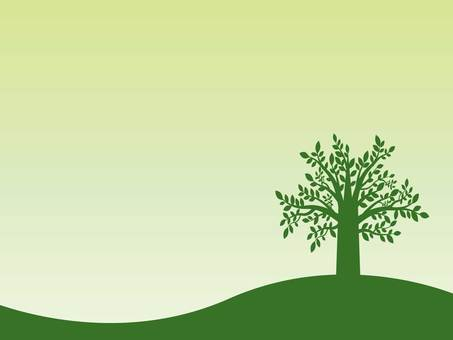 나무 프레임