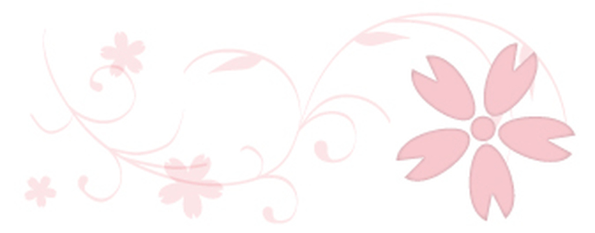 Cherry blossoms _ decoration pattern _ pattern