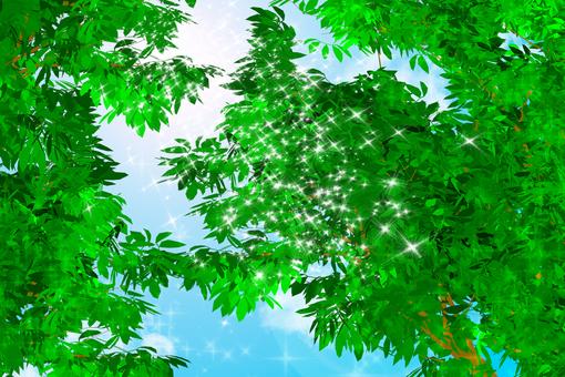 Sparkling fresh green