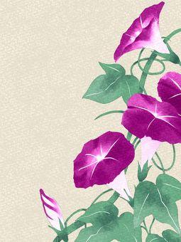 Morning glory watercolor material / pink