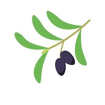 Ripe olive