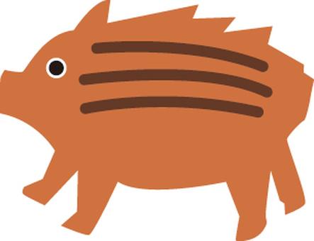 Boar (boar)