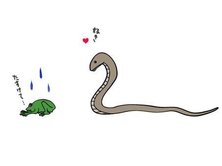 A frog glared at a snake