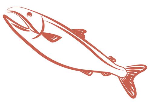 Salmon Salmon Salmon Salmon Salmon Salmon