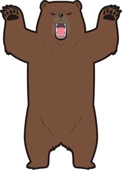 Threatening bear