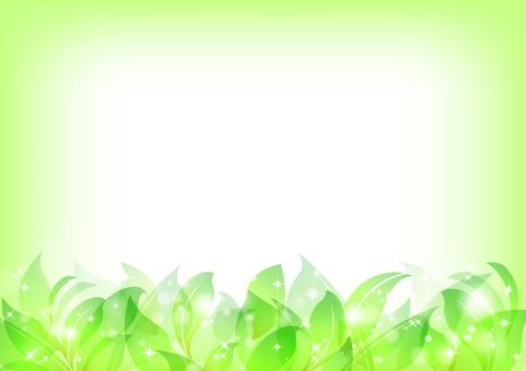Fresh green material 2