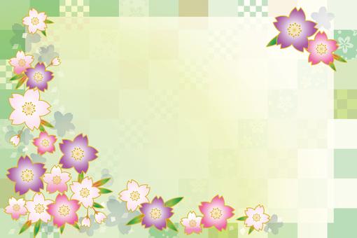 Sakura Sakura 17-06