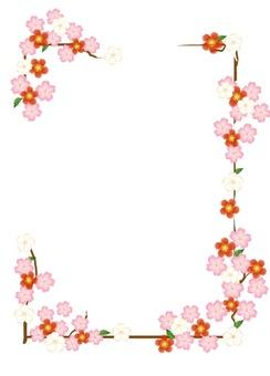 Umenoh Sakura Japanese Pattern Flower