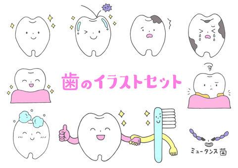 치아의 일러스트 세트