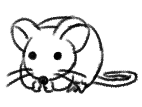 Mouse Cute White Border Coloring