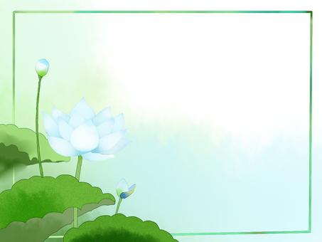 Lotus (white)