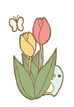 Tulip and butterfly