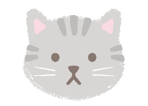 고양이 (3)