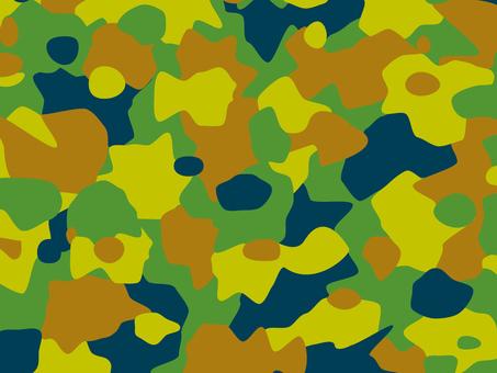 Camouflage camouflage