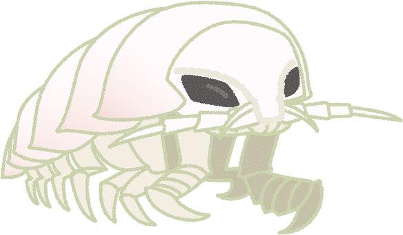 Giant beetle beetle