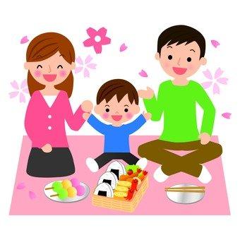 Cherry-blossom family