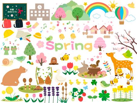 Spring No. 20