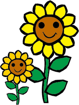 Sunflower parent and child