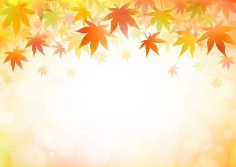 Autumn 195