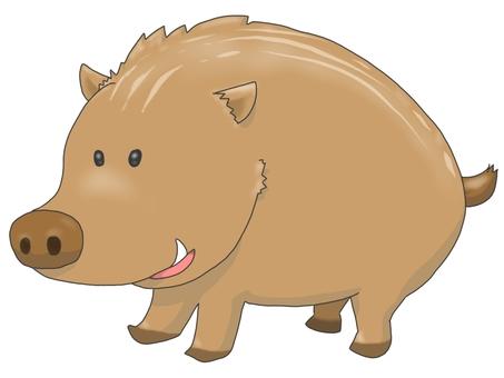 Mr. wild boar