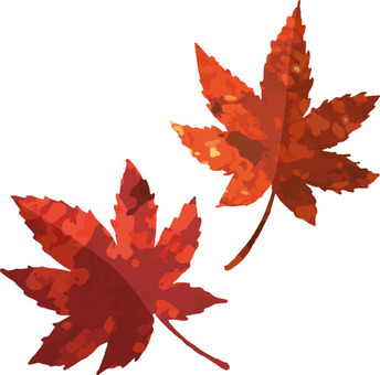 Autumn material (autumn leaves 1 red leaf)