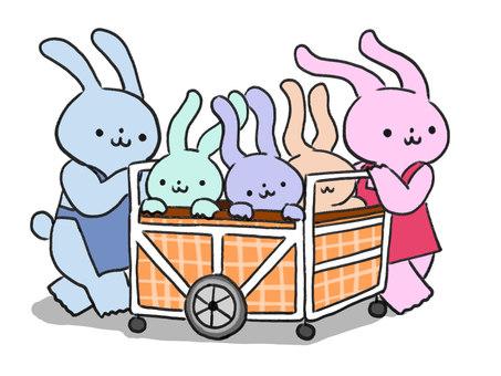 이동중인 보육사 토끼