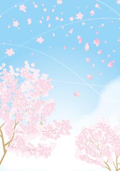 Sakura vertical