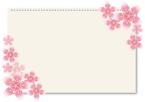 Sakura Sakura & Board 48