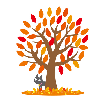 Cats and autumn leaves trees