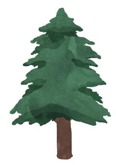 針葉樹 -葉- ③ 植物 水彩