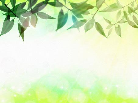 Leaves Background Wallpaper 01
