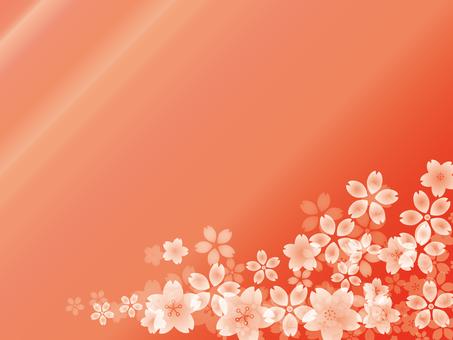 Cherry blossom background gradation