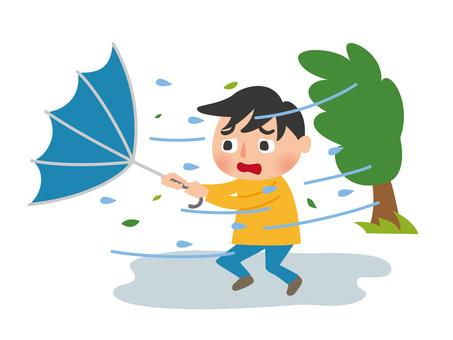 Typhoon 3