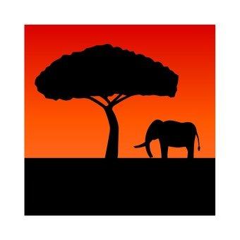 Dusk of Africa