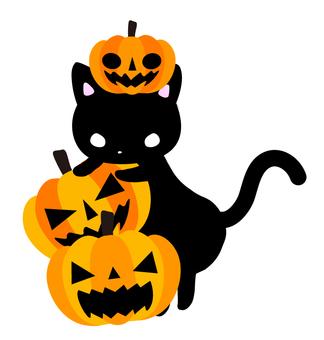 Halloween cat and pumpkin lantern