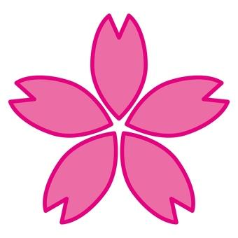 벚꽃 18