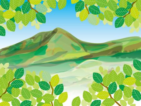 신록의 초여름의 산 (3)