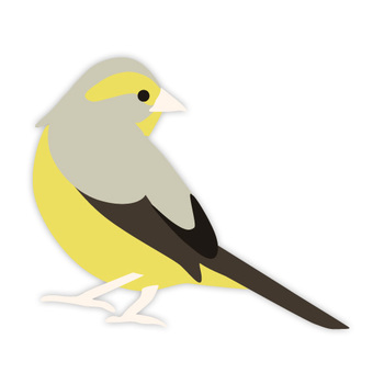Azilo (familiar bird)
