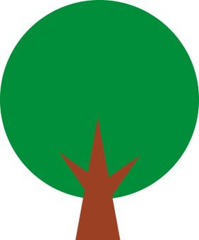 나무 소재 6