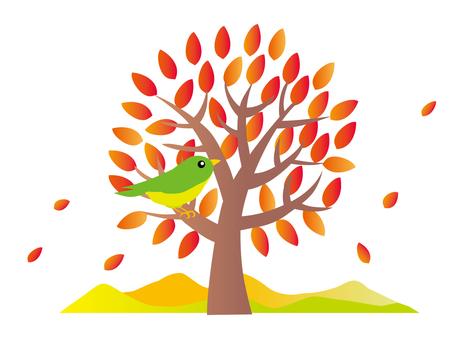 단풍 나무와 작은 새