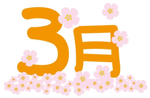 Calendar March _012