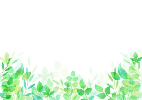 Fresh green material 113