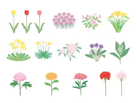 봄의 꽃들