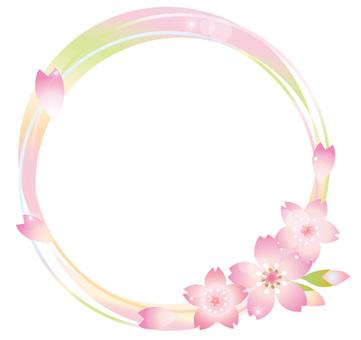 Rainbow color frame of cherry blossoms Frame shine