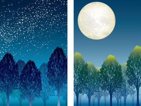 """""""Forest of the Sky"""" and """"Forest of the Moonlight"""" 2 pieces"""