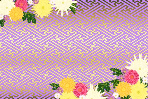 Chrysanthemum and lattice