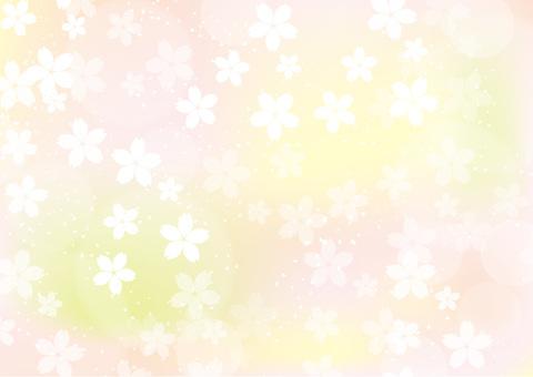 벚꽃 배경 3