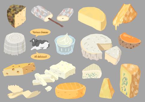 세계의 온갖 치즈 바구니 2