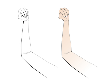 Arms and lower arms